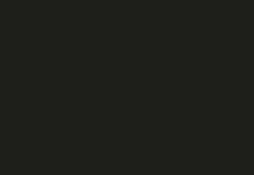 NOIR HAIR & BEAUTY Logo